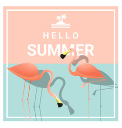 hello summer background with two pink flamingos vector image