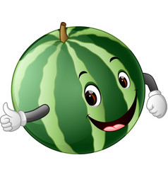 watermelon with face vector image