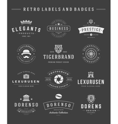 Retro Logotypes set vintage graphics design vector image