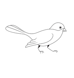 White silhouette of a bird vector image