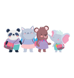 back to school education cute little bear cat vector image