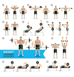 Dumbbell exercises and workouts weight training vector
