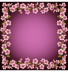 Floral frame sakura blossom background vector