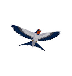 Flying swallow bird with red plumage around the vector