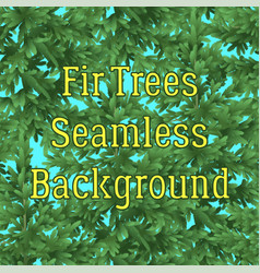Seamless background fir trees vector