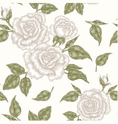 White rose flowers buds and leaves seamless vector