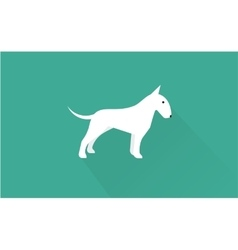 english bull terrier icon vector image