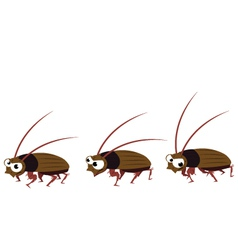 Funny cockroach walking vector