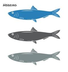 Herring fish vector