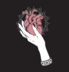 human heart in graceful female hand isolated vector image
