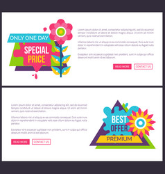 Internet page set special promotion price off sale vector