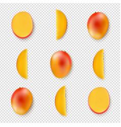 mango isolated transparent background vector image