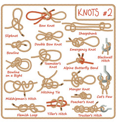 set rope knots hitches bows bends vector image