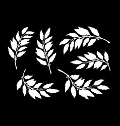 silhouettes branches with laurel leaves vector image