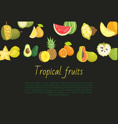 Tropical fruits banner with exotic food jackfruit vector