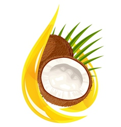 coconut oil vector image vector image