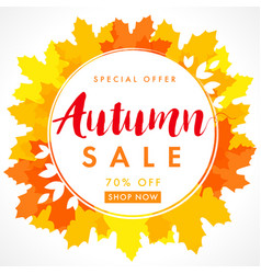 Autumn sale frame orange maple leaves banner vector