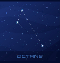 Constellation octans octant night star sky vector