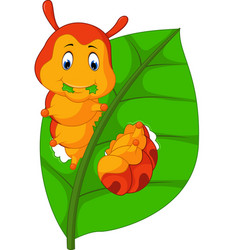 Funny caterpillar eating leaf vector
