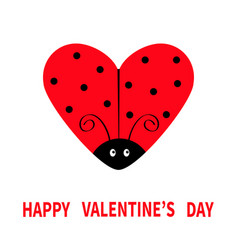 Happy valentines day red flying lady bug insect vector