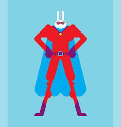 Hare superhero super rabbit in mask and raincoat vector