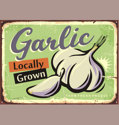 Locally grown garlic retro sign design vector
