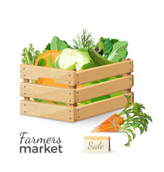 sale at farmers market promo poster with vector image