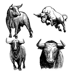 Set of bull doodle hand drawn vector