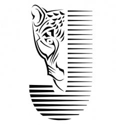 wildcat sign vector image