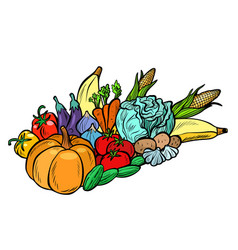 Autumn harvest pumpkin corn cabbage tomato potato vector