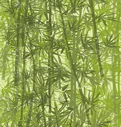 bamboo06 vector image