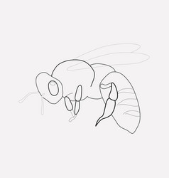 Bee icon line element of bee vector