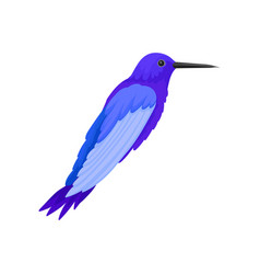 flat icon of gorgeous blue colibri vector image