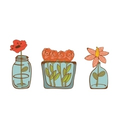 Set of beautiful flowers in glass vases vector image