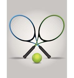Tennis Racquets and Ball vector image