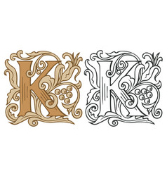 Vintage initial letter k with baroque decoration vector