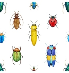 Watercolor bug beetle pattern vector image