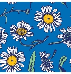 Beautiful vintage background with white daisies vector image vector image