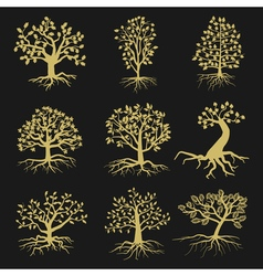 Black tree silhouettes with leaves and roots vector