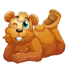 A brown bear vector image vector image