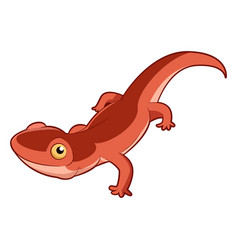 cartoon smiling newt vector image vector image