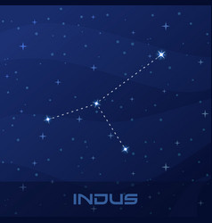 constellation indus indian night star sky vector image