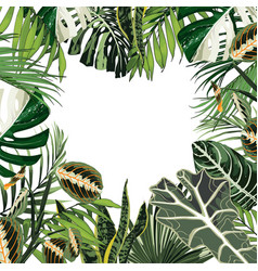 decorative heart with tropical leaves vector image