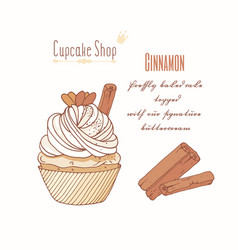 Hand drawn cupcake cinnamon flavor vector