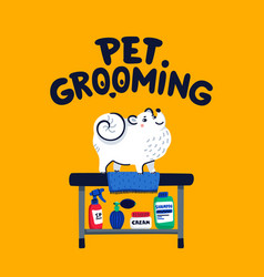 Pet grooming concept white lap-dog on grooming vector