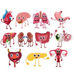 set cute and funny healthy human organ vector image
