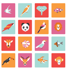 Tropical birds animals and vector