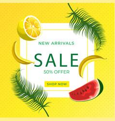 Watermelon slice lemon slice banana fruits on vector