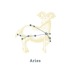 Zodiacal constellation aries on background vector