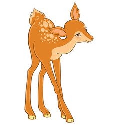 cartoon cute young deer vector image vector image